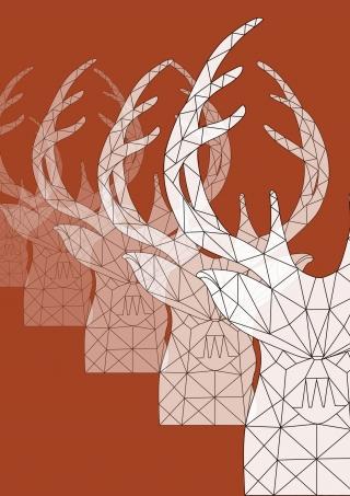 deer1_illustration