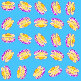 Cothyloriza Tubercolata or fried egg jellyfish pattern illustration with a colorful neon colored mediterranean jellyfish in yellow orange and purple on a neon blue background