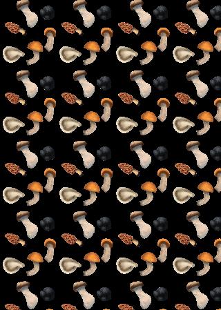 mushroom pattern 33