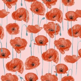 Poppies_02