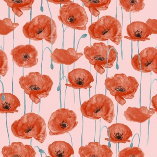 Poppies_02.jpg