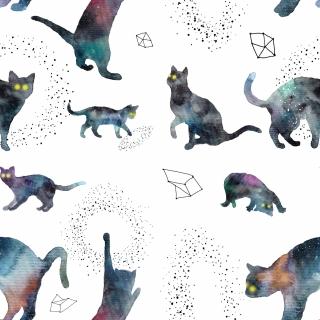 cosmic_cats