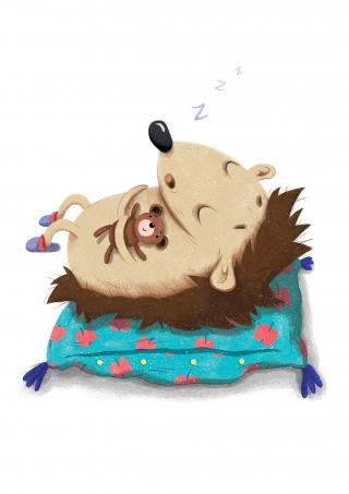 Sleeping hedgehog (Lil Castle).jpg