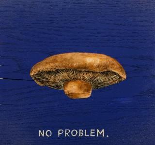 RAO_mushrooms_no_problem