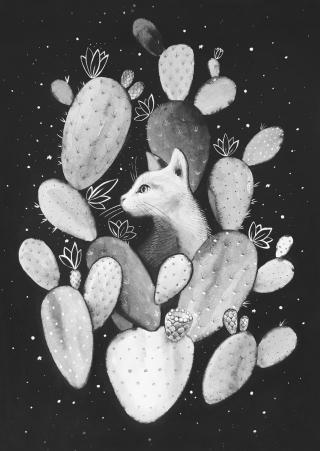 Cactus cat.jpg