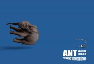 Ant Vacuum.jpg