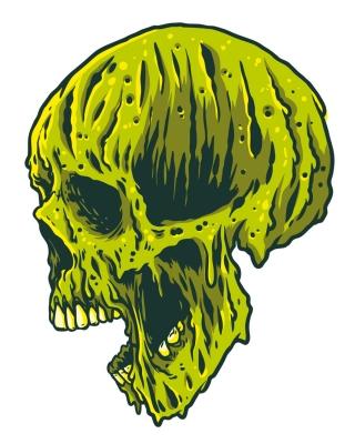 meilting_skull_03.jpg