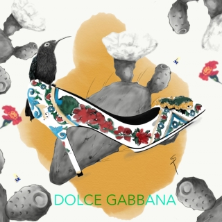 Dolce Gabbana