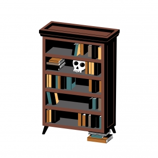 Bookstore furniture