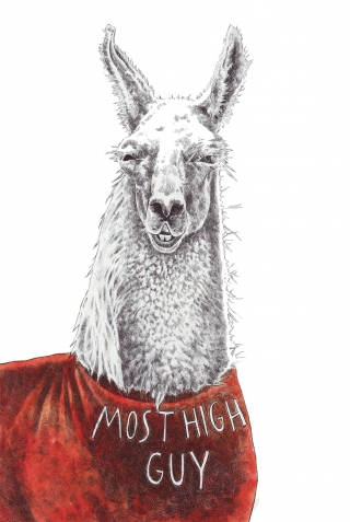 high guy