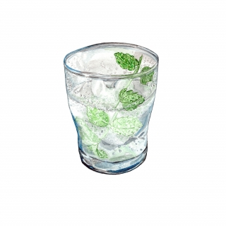 A glass with a bubbly drink with ice and a stalk of mint leaves..jpg