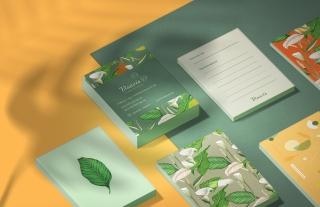 Beauty studio branding design and illustrations.jpg