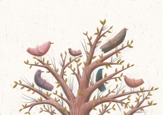 about_birds_6