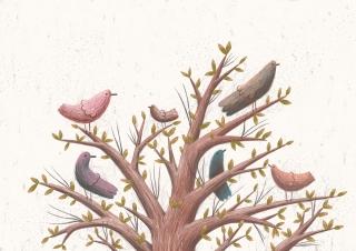 about_birds_6.jpg