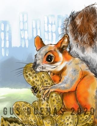 squirrelmania2