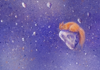 Red squirrel drifting on a meteorite through a starry sky.
