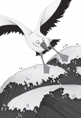 9-10-Albatros-ucuyor.jpg