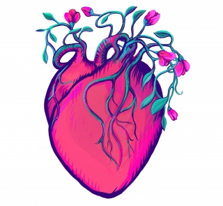 Pink blooming heart in love.