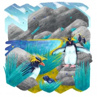 Penguins at beach - endangered species series