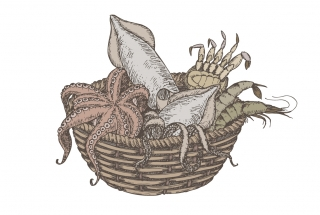 fiverr seafood basket color.jpg