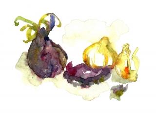 onionswatercolor