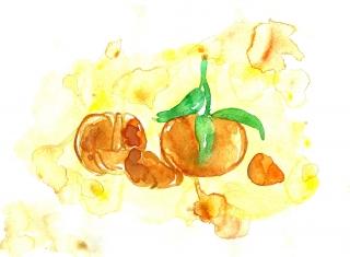 Mandarins, orange, oranges, fruit, fruits, yellow,
