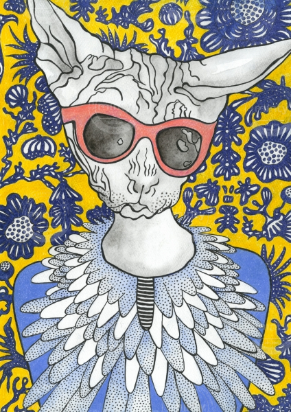 Furless cat wearing sunglasses
