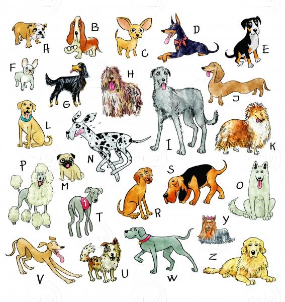 Dogs ABC