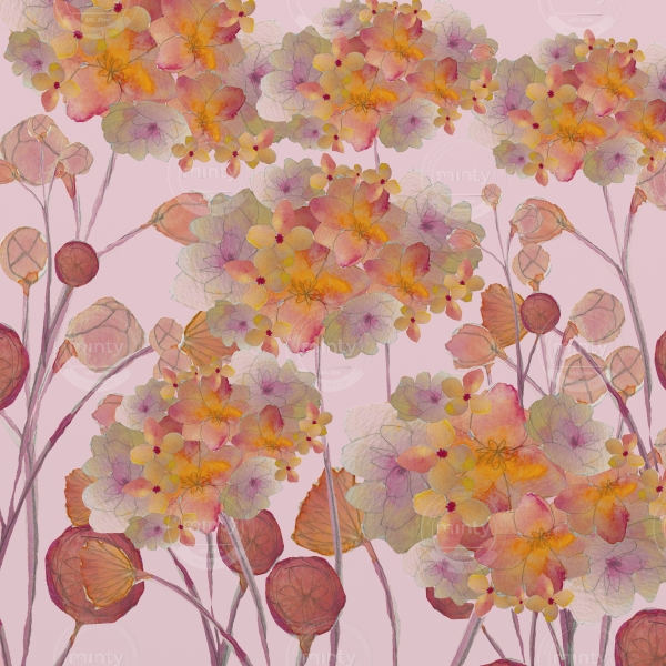 Pink hortensia collage