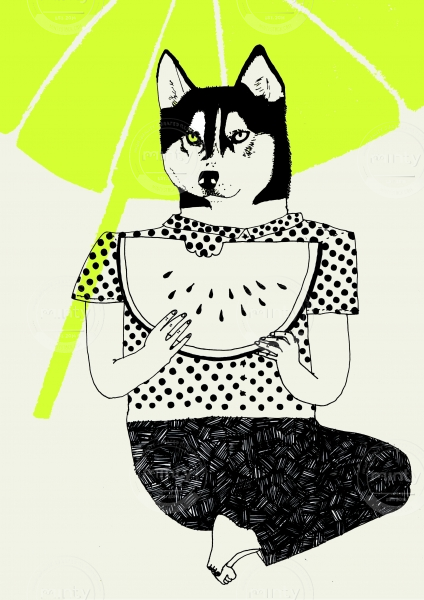 Husky person eating watermelon
