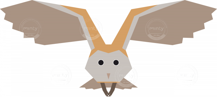 Barn Owl Bird Vector Artwork