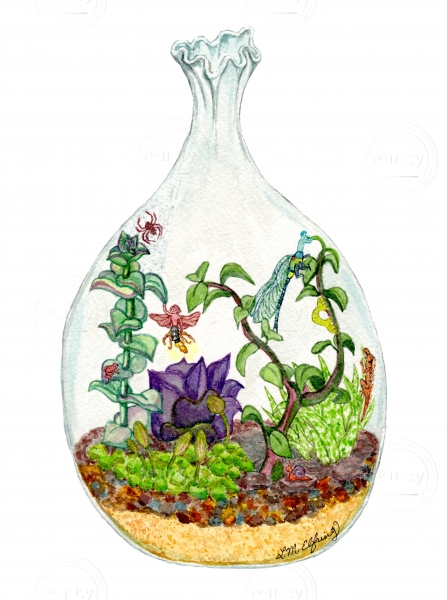 Terrarium in a glass vase with succulents, spider, lizard, frog, inchworm, and two insect fairies.