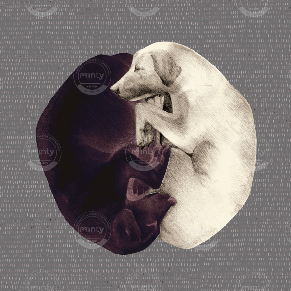 yin-yang dogs on grey background