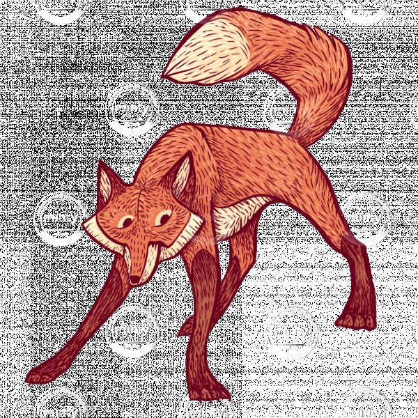Fox character design