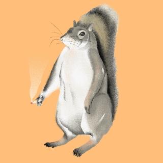 Smoking squirrel.jpg